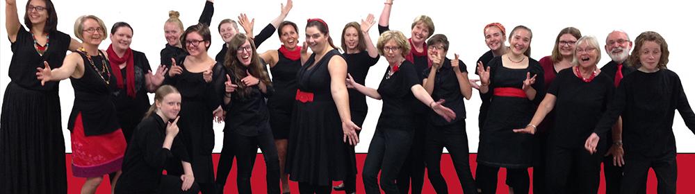 Raise the Bar Vocal Group - Geelong Choir